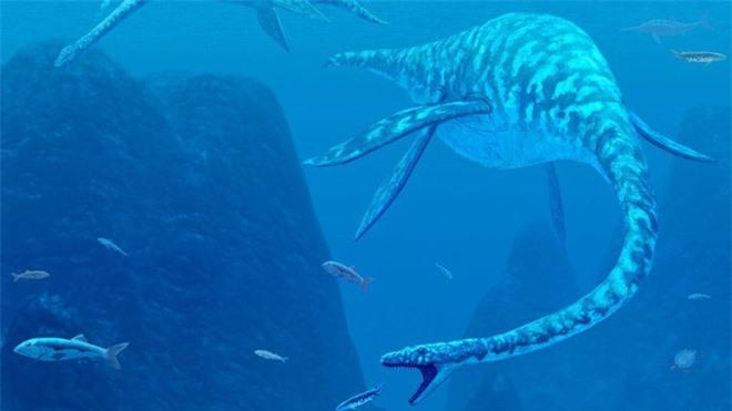 Giả thuyết điên rồ: Quái vật hồ Loch Ness thực chất là cái ấy của cá voi? - Ảnh 2.