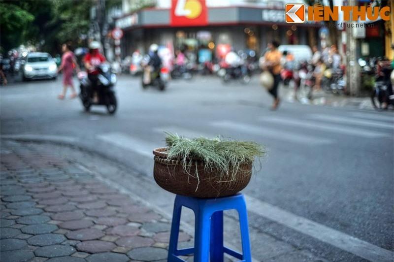Kham pha an tuong ve con pho co dac san hot nhat Ha Noi-Hinh-2