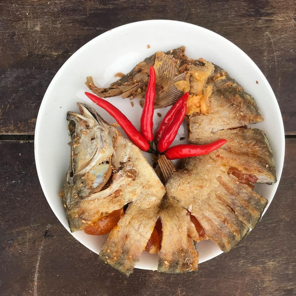 Cá thát lát có thể chế biến thành nhiều món ngon như chả cá thát lát chiên miếng, chả cá thát lát nhồi khổ qua nấu canh, cá thát lát rút xương tẩm gia vị, khô cá thát lát một nắng... Một số sản phẩm hiện được sản xuất theo quy trình hiện đại, tiện lợi khi sử dụng. Ảnh: Hậu Giang Farm.