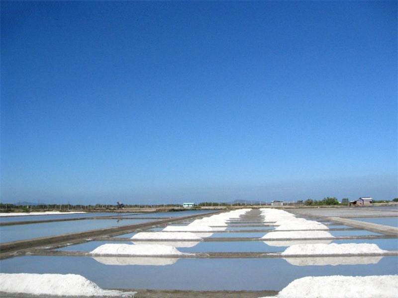 Từ Bà Rịa, du khách chỉ cần đi theo tỉnh lộ 44A ra tới huyện Long Điền là bạn có thể hỏi thăm cánh đồng muối này. Ảnh: Thanh Tịnh.