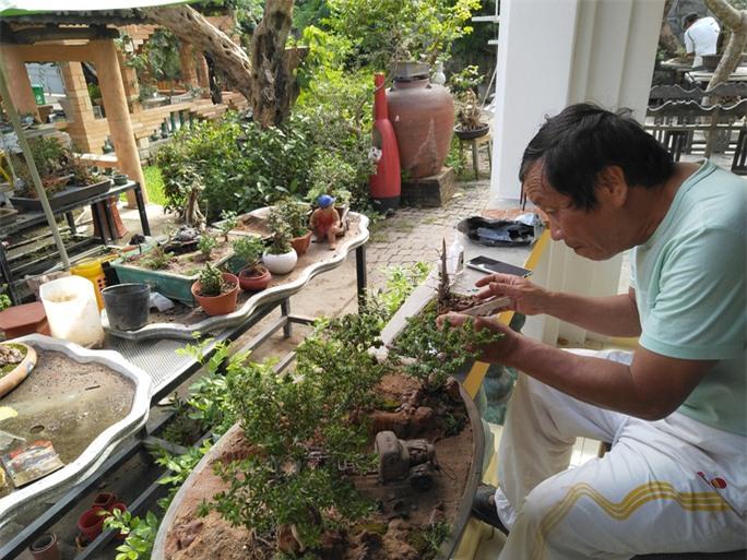 Chiêm ngưỡng bộ sưu tập kỷ lục thế giới 5.600 cây bonsai và tiểu cảnh mini - Ảnh 4.