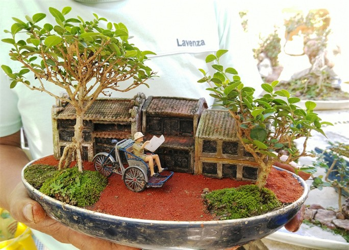 Chiêm ngưỡng bộ sưu tập kỷ lục thế giới 5.600 cây bonsai và tiểu cảnh mini - Ảnh 5.