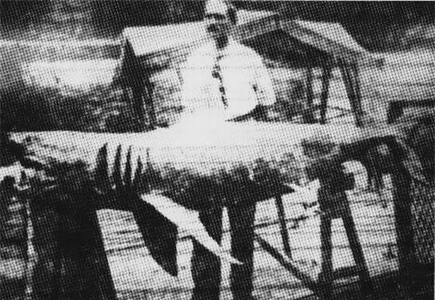 Những vụ cá mập tấn công, giết người kinh hoàng nhất thế giới ảnh 3