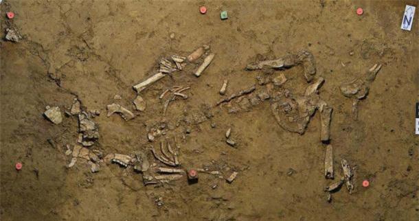 Tìm thấy trang sức bằng vàng trong ngôi mộ 3.800 năm tuổi ở Đức - Ảnh 1.