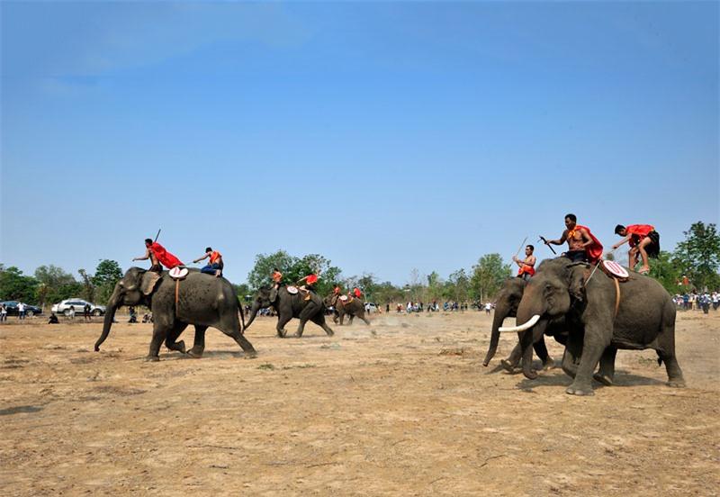 Lễ hội đua voi. Ảnh: Diem Dang Dung.