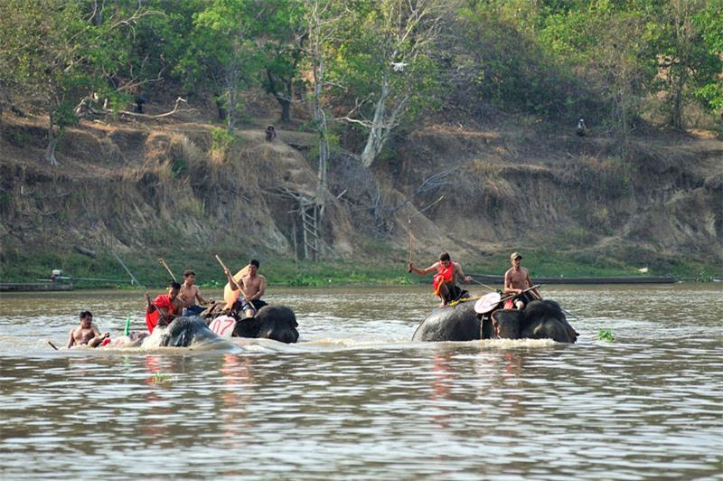 Hội thi voi bơi vượt sông. Ảnh: Diem Dang Dung.