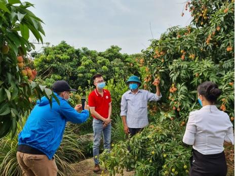Sendo cùng nông dân Hải Dương thực hành livestream bán hàng trên kênh trực tuyến.