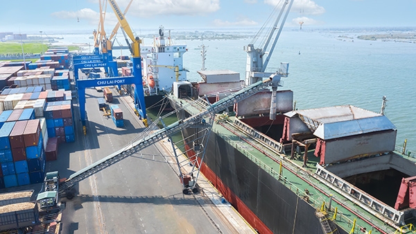 Đưa dăm gỗ lên tàu bằng băng chuyền để xuất khẩu