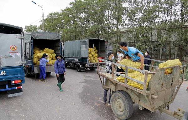 Đề nghị thành lập Đội vận tải xanh để hỗ trợ tiêu thụ nông sản.