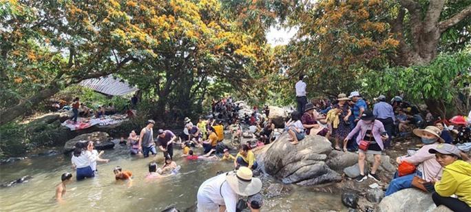 Hoa trang rừng phủ kín suối Tà Má - Ảnh 3.