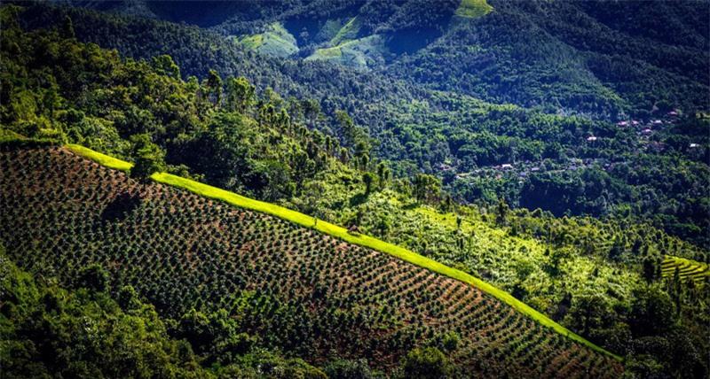 Đứng trên dốc đèo phía tỉnh Điện Biên nhìn xuống du khách sẽ thấy thung lũng Mường Quài trải rộng với ngút ngàn màu xanh của đồi núi, thấp thoáng những làng bản đầu tiên của huyện Tuần Giáo (Điện Biên). Ảnh: Le Hong Ha.