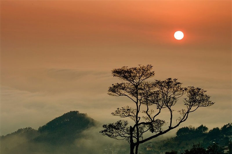 Huyện Tam Đảo gồm có thị trấn Tam Đảo và 8 xã gồm Bồ Lý, Đại Đình, Đạo Trù, Hồ Sơn, Hợp Châu, Minh Quang, Tam Quan, Yên Dương. Ảnh: Tuan Trung.