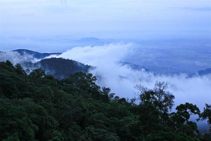 Huyện nổi tiếng với khu du lịch Tam Đảo nằm trên địa bàn thị trấn Tam Đảo. Ảnh: Mytour.