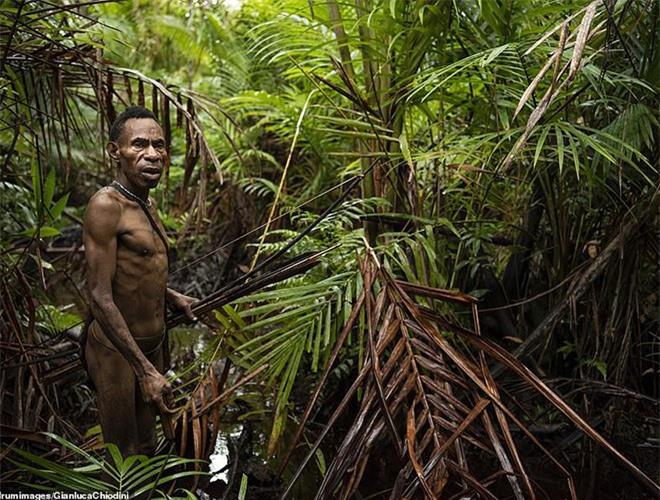 Hình ảnh hiếm hoi về người Korowai - bộ lạc mà thế giới suýt không biết đang tồn tại - Ảnh 2.