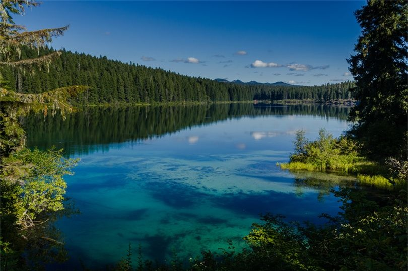 Khám phá hồ nước ẩn chứa cả khu rừng cổ xưa 1
