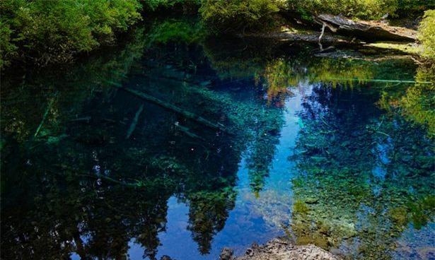 Khám phá hồ nước ẩn chứa cả khu rừng cổ xưa 2
