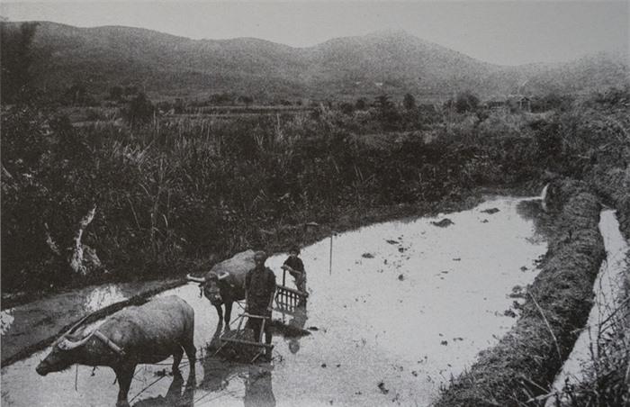 Trẻ em các vùng miền Việt Nam cách nay hơn 100 năm - Ảnh 10.