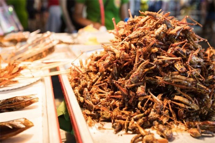 10 món ăn kỳ lạ nhất định phải thử khi du lịch đến Thái Lan 1