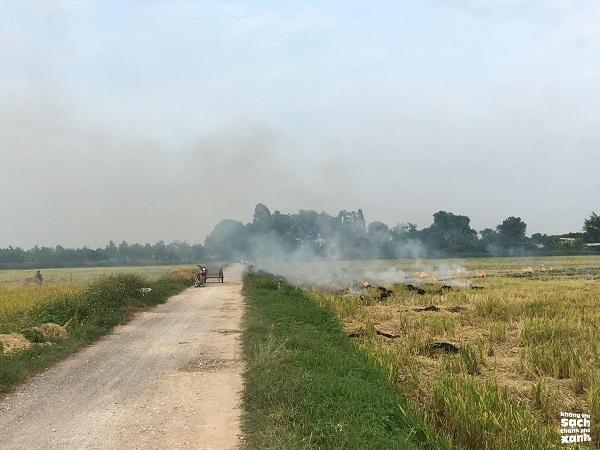 Đã có ít nhất 6 huyện ngoại thành Hà Nội áp dụng giải pháp xử lý rơm rạ thay vì đốt