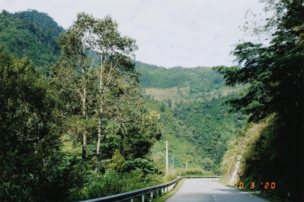 Đường lên Tây Bắc xa xôi, bao quanh là núi non, cây cối bạt ngàn. Ảnh: Mỹ Linh
