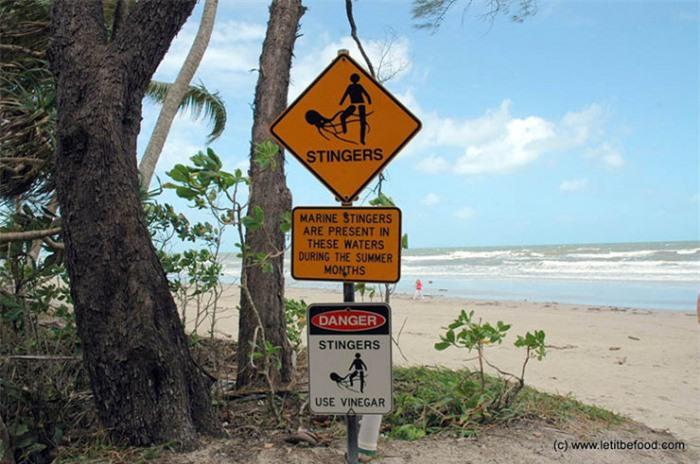 Những bãi biển này trông đẹp, nhưng lại chứa đựng những bí mật chết người 3