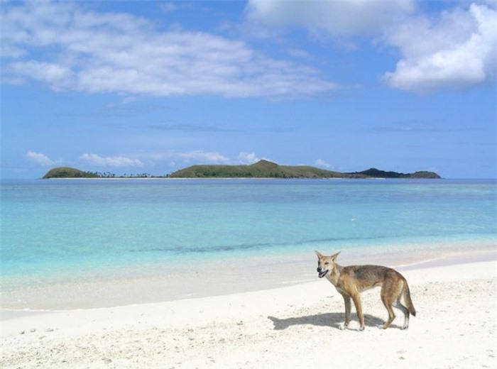Những bãi biển này trông đẹp, nhưng lại chứa đựng những bí mật chết người 4