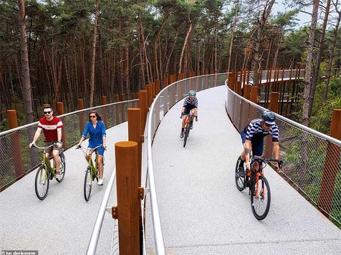 Con đường xe đạp xuyên qua hồ nước, đẹp nhất thế giới 7