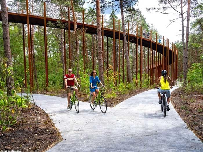 Con đường xe đạp xuyên qua hồ nước, đẹp nhất thế giới 9