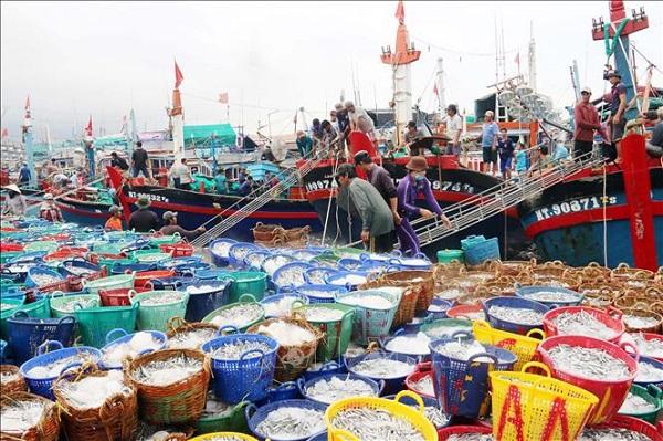 Chính phủ bổ sung hơn 462 tỷ đồng thực hiện chính sách phát triển thủy sản.