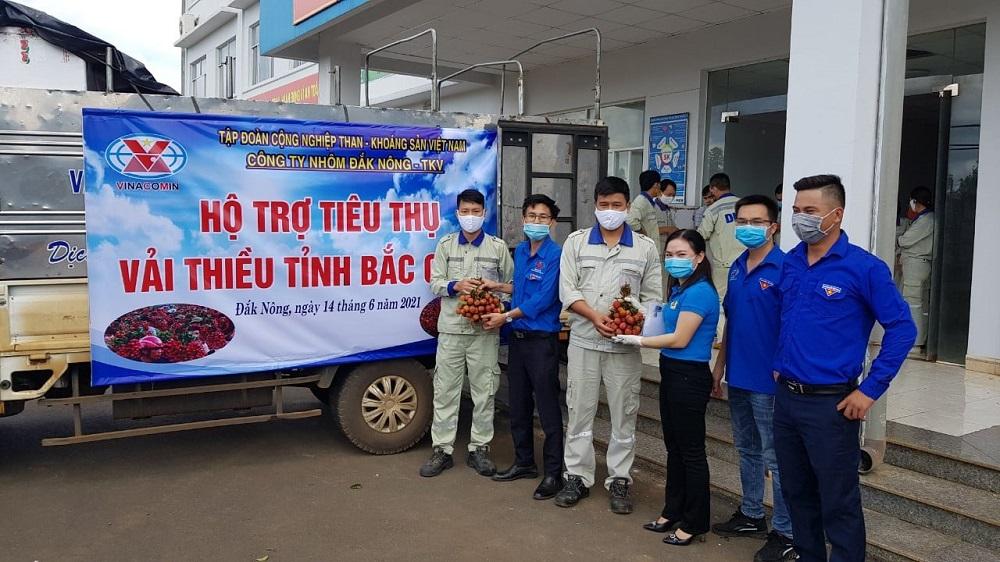 Hơn 6 tấn vải thiều Bắc Giang đã được cán bộ công nhân viên Công ty Nhôm Đắk Nông - TKV tiêu thụ.