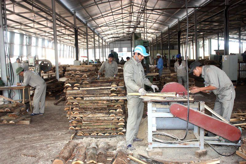 Nhằm tiếp tục hỗ trợ cho các doanh nghiệp nhỏ và vừa trong thời gian tới, Phó Chủ tịch UBND tỉnh Lê Ngọc Khánh đã yêu cầu các sở, ban, ngành, đơn vị tích cực thực hiện các chính sáchđể thục đẩy doanh nghiệp phát triển.