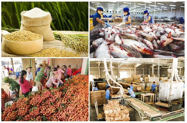 Xuất khẩu nông, lâm, thủy sản 5 tháng đầu năm của Việt Nam tăng hơn 30% so với cùng kỳ 2020, thu về 22,8 tỷ USD.