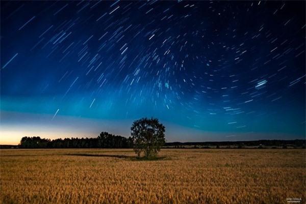"""Ngỡ ngàng với những bức ảnh huyền ảo, """"đẹp thần thánh"""" ở nơi toàn là bóng đêm - 14"""