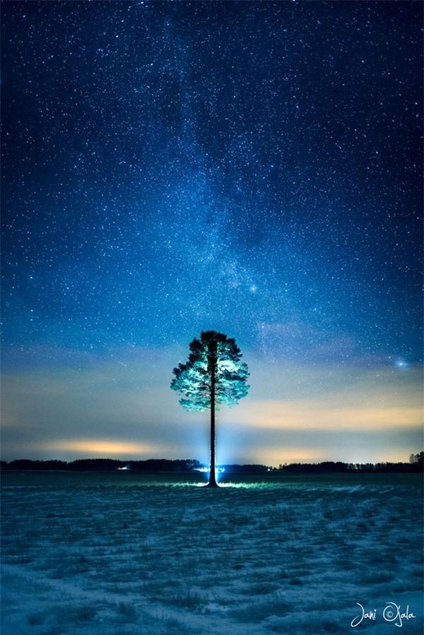"""Ngỡ ngàng với những bức ảnh huyền ảo, """"đẹp thần thánh"""" ở nơi toàn là bóng đêm - 2"""
