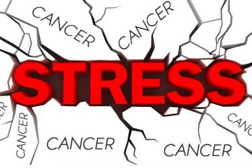 Ngăn chặn stress có thể hỗ trợ điều trị bệnh ung thư?