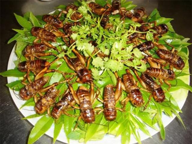 Món đặc sản thử thách lòng can đảm của người ăn ở vùng Long Khánh - Ảnh 6.
