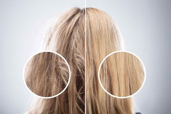 Lý do tại sao tóc càng dưỡng càng khô
