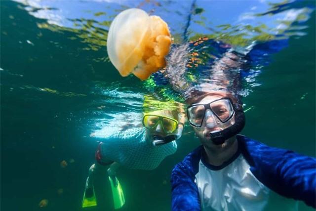 Palau thuộc Micronesia trên Thái Bình Dương, đây là một trong những nơi tốt nhất thế giới để lặn.