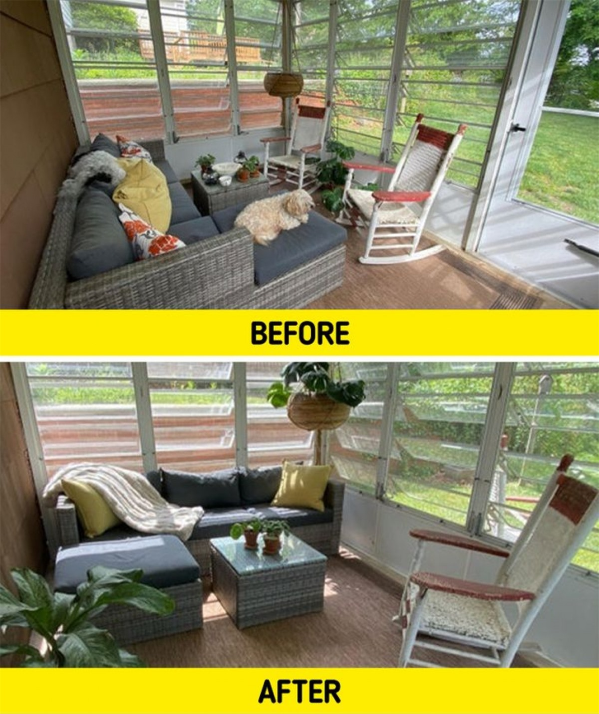Kê lại ghế sofa để hưởng trọn vẹn sự ấm áp của ánh nắng mặt trời cùng đặt thêm vài chậu cây, căn phòng trông như bức ảnh chụp trên tạp chí.