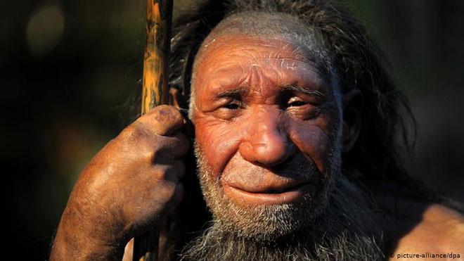 Người Neanderthal có quan hệ gần gũi với Homo sapiens. Ảnh: DW.