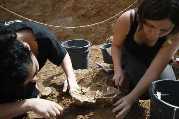 Những mảnh xương được tìm thấy trong một hố sụt cổ tại địa điểm khảo cổ Nesher Ramla gần thành phố Ramla, Israel. Ảnh: Yossi Zaidne.