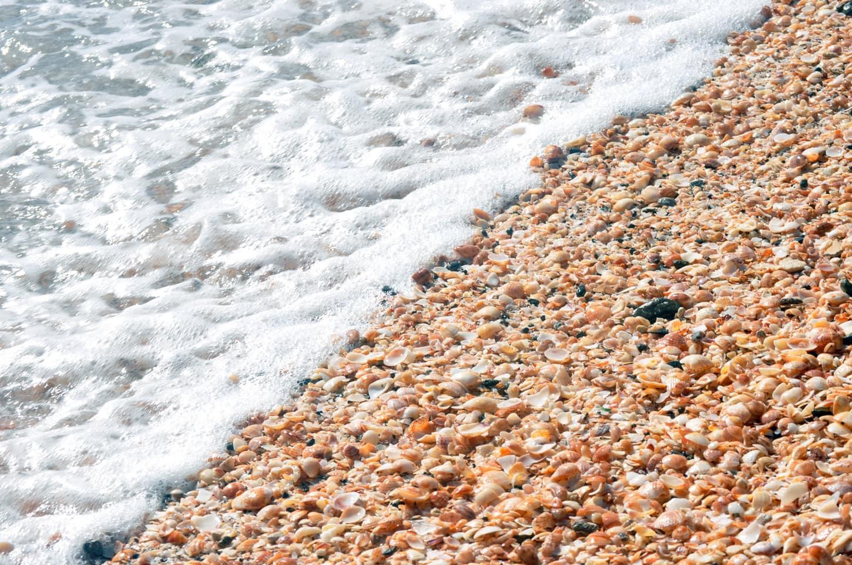 Bãi biển vỏ sò (Australia): Shell Beach thuộc khu vực vịnh Shark, phía tây Australia, mang màu trắng xóa như tuyết dọc theo bờ biển. Tuy nhiên, đây không phải cát trắng mà hoàn toàn là lớp vỏ sò dày gần 10 m. Nước biển có lượng muối cao khiến sò sinh sôi nảy nở không kiểm soát. Khi chết đi, sò trôi dạt vào bờ. Quá trình diễn ra trong hàng nghìn năm khiến bãi biển hoàn toàn được phủ kín bởi vỏ sò. Ảnh: Uncommon Caribbean