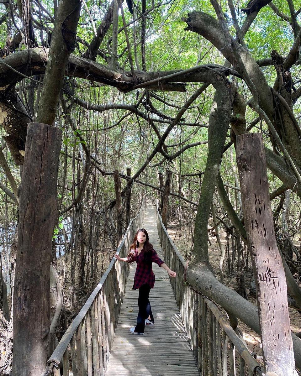 Huyện Buôn Đôn nằm ở phía tây tỉnh Đắk Lắk, còn có tên cũ thường gọi là Bản Đôn. Nơi đây có cây cầu treo nổi tiếng, độc đáo. Theo trang TTĐT huyện Buôn Đôn, cầu làm bằng vật liệu tre, nứa, song, mây, có gia cố thêm cáp sắt, như xuyên qua giàn gừa (còn gọi cây si) cổ thụ, trăm năm tuổi, mọc ven bờ sông Sêrêpôk (có một số cách viết khác). Tán cây bao trùm diện tích hơn 1 ha, với phần gốc, rễ lạ mắt, kỳ thú. Ảnh: Phuongdong_hh.