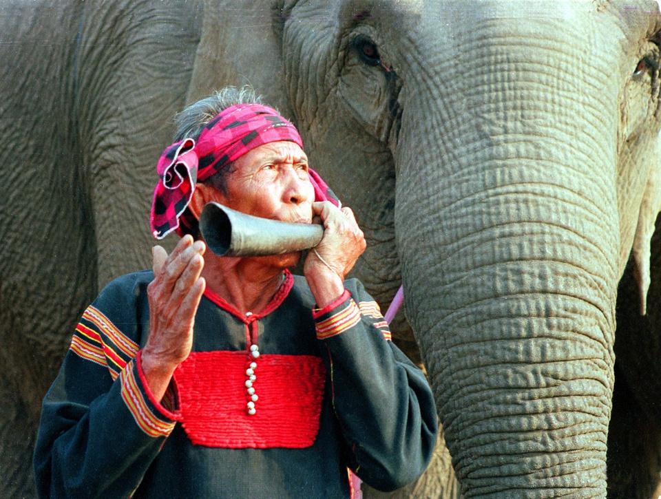 """Buôn Đôn, hay Bản Đôn trước đây, nổi tiếng với nghề săn bắt, thuần dưỡng voi rừng, tạo nên nét bản sắc văn hóa rất độc đáo. Tiếng tăm của những người làm nghề này một thời được truyền tụng khắp nơi. Ngày nay, voi được bảo tồn theo chính sách của nhà nước. Đến Buôn Đôn, du khách có thể tìm hiểu về """"vua voi"""" Y Thu - Khunjunôp và người cháu nối ngôi Ama Kông đã trở thành huyền thoại của vùng đất này. Ảnh: Báo Đắk Lắk."""