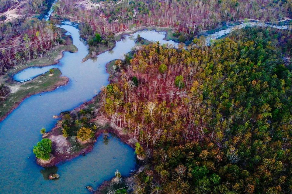 Vườn quốc gia Yok Đôn nằm trên địa phận 3 huyện Buôn Đôn, Ea Súp (Đắk Lắk) và Cư Jút (Đắk Nông), trong đó huyện Buôn Đôn là nơi đặt trụ sở ban quản lý vườn. Theo thông tin giới thiệu, đây là vườn quốc gia bảo tồn các khu rừng khộp duy nhất ở Việt Nam, tức rừng thưa lá rộng rụng lá theo mùa. Ảnh: Vinh Gấu.