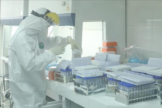 Xét nghiệm virus SARS-CoV-2. Ảnh: TTXVN.