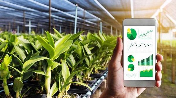 """Điểm """"nghẽn"""" trong chuyển đổi số nông nghiệp chính là đồng bộ hóa dữ liệu."""