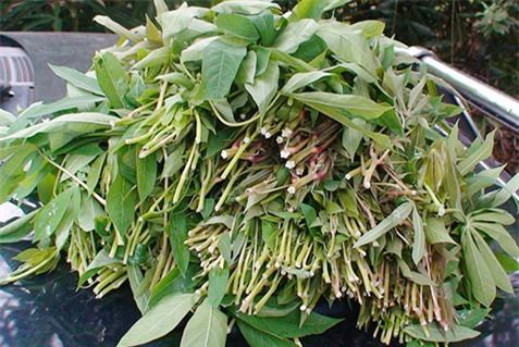 Món rau muối chua dân dã ở Phú Thọ mang về Thủ đô thành đặc sản hiếm có giúp người bán kiếm tiền triệu mỗi ngày - Ảnh 2.