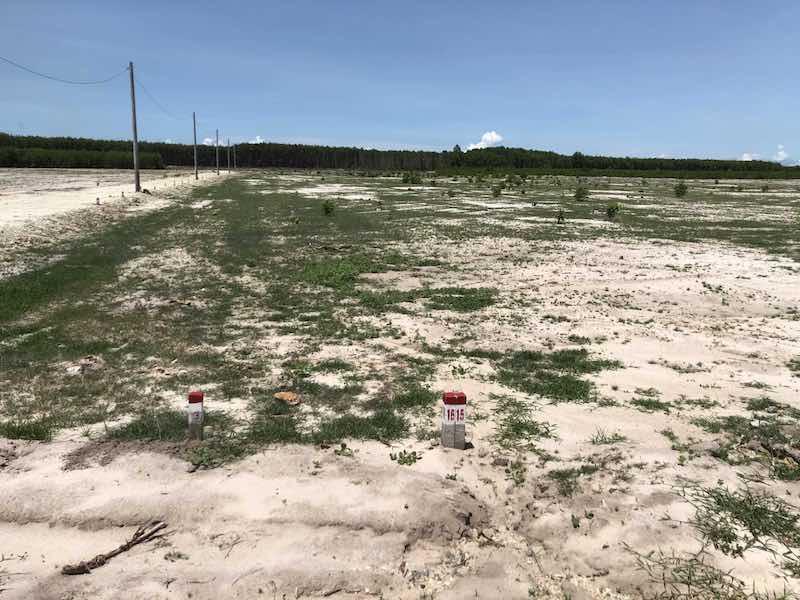 Dự án Hồ Tràm Airport thực chất chỉ là một bãi đất trống, chưa xây dựng cơ sở hạ tầng hoàn chỉnh nhưng đã được Phú Mỹ Holdings rao bán cho nhiều khách hàng.