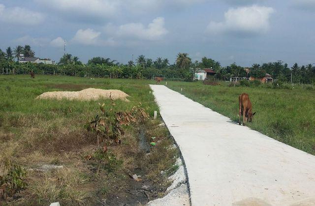 Xử nghiêm trường hợp tự mở đường giao thông để phân lô bán nền đất nông nghiệp.